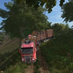 MAN TGS Forest, 60t gtw