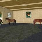 Platz für weitere Pferde: Ein neuer Stall mit Boxen