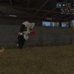 HILFE, meine Kuh hat BSE ^^