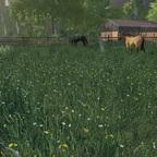 Die gemischte Weide