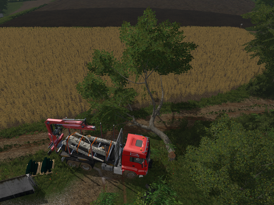 Heute mal nicht im GE, die nervenden Bäume beseitigt :D