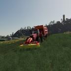 Gras braucht das Vieh